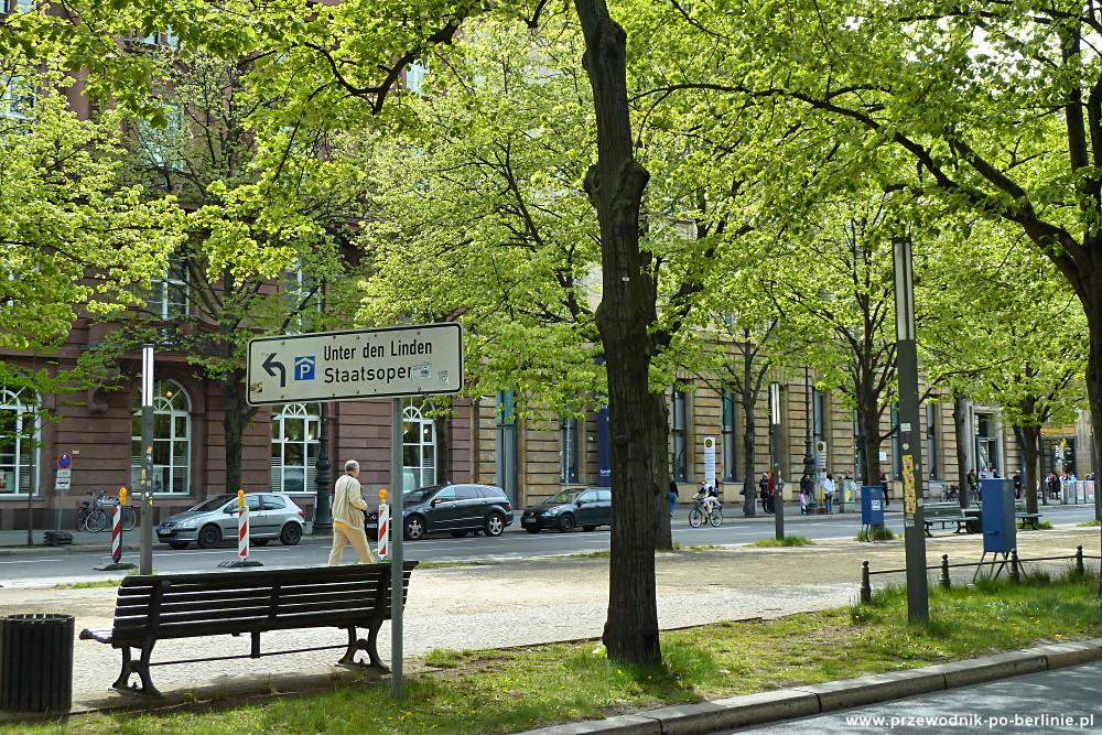 rozwój berlina aleja pod lipami